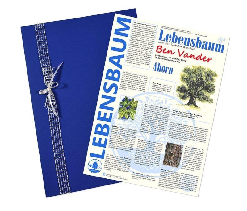 """Lebensbaum Urkunde """"Modern Jungs"""""""