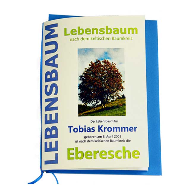 """Lebensbaum Geschenkkarte """"Jungs"""""""