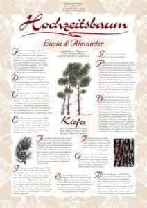 Hochzeitsbaum Urkunde Exklusive Kiefer Bescheidenheit