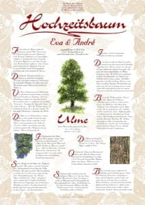 Hochzeitsbaum Urkunde Exklusive Ulme